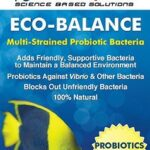 dr_tims_eco_balance_saltwater_a