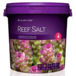 reef salt 22