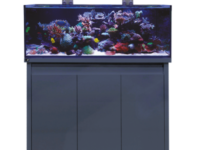 D-D Aquarium Solutions Reef Pro Aquariums