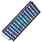 Orphek_Aquarium_LED_Lighting_Reef_Atlantik_V4_light_on-1000x1000__65386.1559584648.650.650