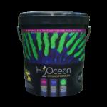 H2Ocean Dosing Formula